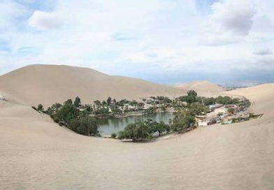 Οι κήποι της ερήμου